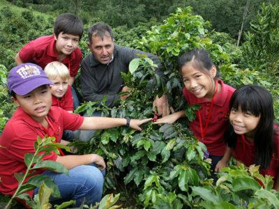 Kaffeeprojekt: Plantagen im Hochland von Da Lat