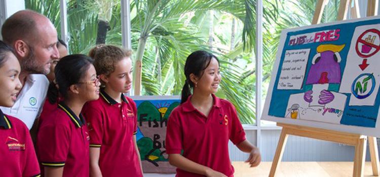 Kunstunterricht: Insekten zur Lösung globaler Nahrungsprobleme