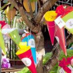 Einschulung: bunte Schultüten hängen am Baum